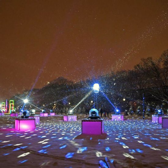 Custom Outdoor Events - Brookfield Zoo Holiday Magic - Polar Lights